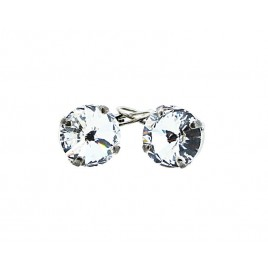 Rivoli Sparkling Earrings